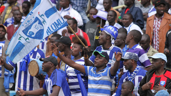Ingwe unveil plans to celebrate 50 years