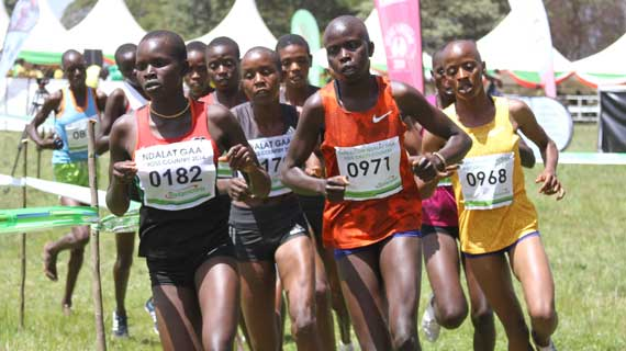 World youth stars turn focus to cross country