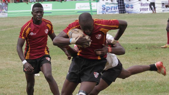 Egerton Wasps withdraw from Driftwood Action