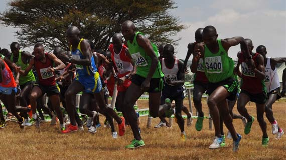 Thousands expected for the 2017 Discovery Cross Country  in Eldoret