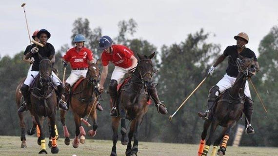 POLO: Samurai chasing  third trophy in five weeks