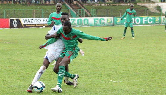 Mount Kenya, Zoo in fight for survival as KPL gets to homestretch